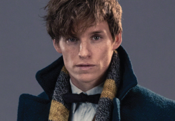 A Letter to Newt Scamander